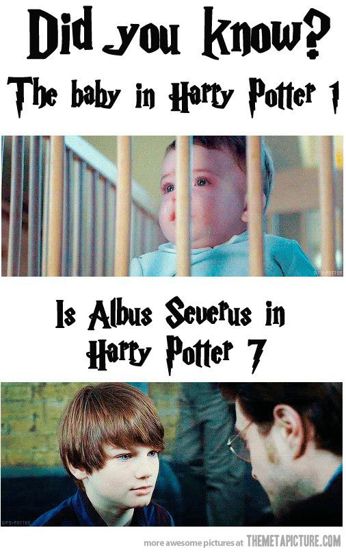 Harry Potter's mind blowing fact