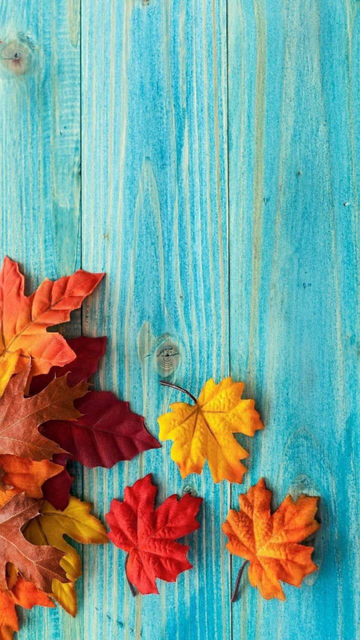 Fall wallpaper Fall wallpaper, Iphone wallpaper fall