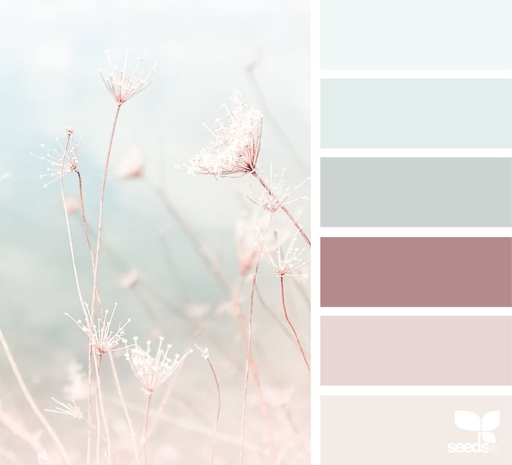 { color nature } image via: @lisaridgelyphotography 013016