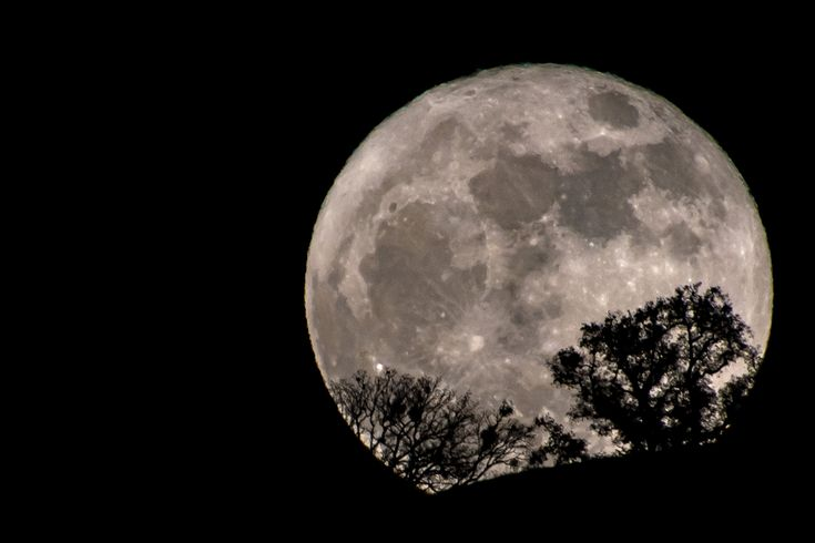 Here is a list of all the full moon names, dates and times (for the Eastern time zone) in 2018, beginning with the 'wolf' moon in January and the 'cold' moon in December.