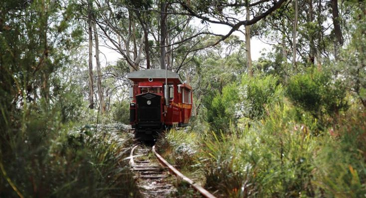 Ida Bay Railway - Far South Tasmania About a two hour drive south of Hobart, I cant recommend it more highly. A beautiful journey through bushland covering an original settlement and the landmarks of what remains. #HistoricTasmania #Heritage