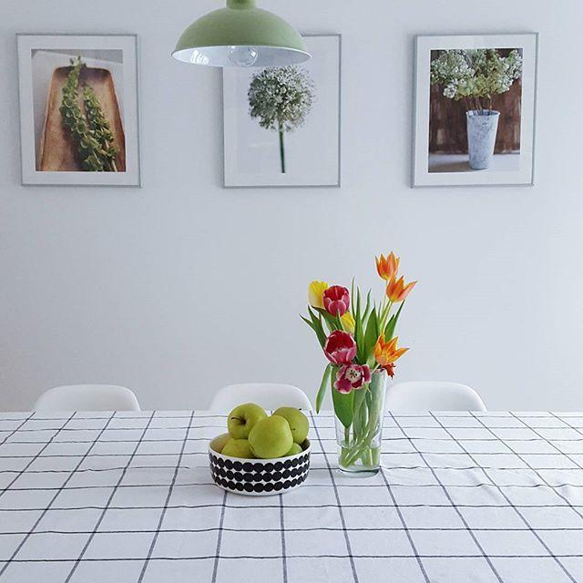 What a lovely fresh kitchen.  Our olive green Mila luminaire also comes in pink, white or turquoise 😊 Hope you all have had a lovely Valentines day, enjoy your evening!  Photo by @lukindae  #seesak #sessaklighting #sessakdesign #mila #luminaire #interior #inredning #etuovisisustus #interior4all #inspiroivakoti #styleroom_fi #riippuvalaisin #lamppu #lampa#interiordesign #interiorinspiration #scandinavianhome #scandinaviandesign #sisustusinspiraatio