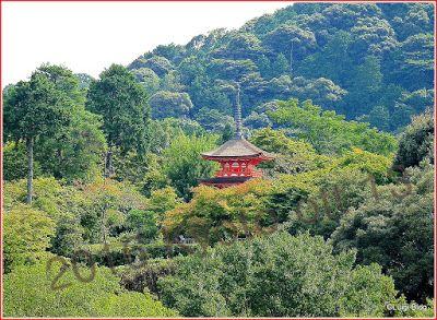 Parti-Colori - Kyoto by L.Spagnolo