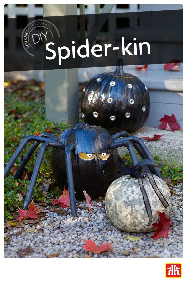 Take advantage of pumpkin season by thinking of fun and creative DIY ideas. Transform your pumpkin into Spider-kin.