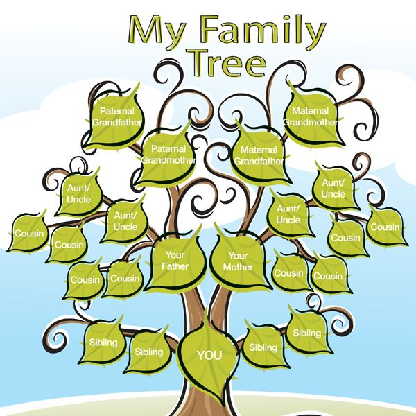 Why Your Children Need This Family Tree for Kids - iMom