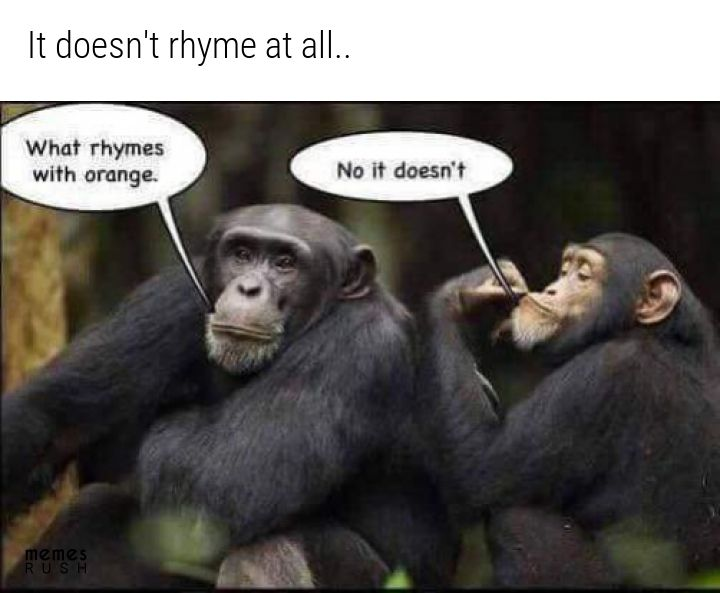 20 Funny Memes Of The Day What Rhymes Silly Jokes Really Funny