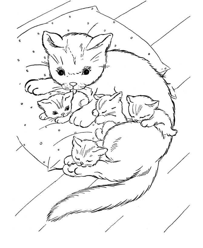 19+ Animal coloring pages for kids cat ideas