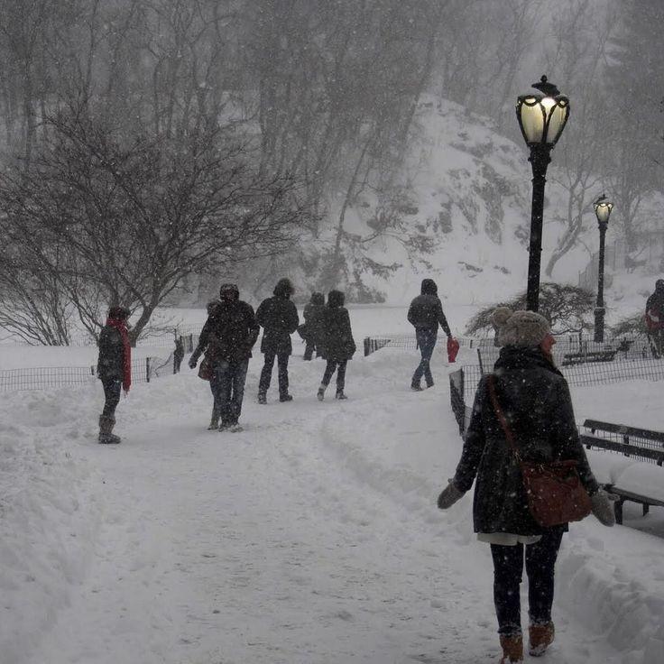 Schnee Schnee Schnee  so viel Schnee. Auf meinem Blog (Link im Profil) berichte ich über unseren ersten verrückten Tag in New York City. Immer mit dabei Schneesturm Jonas. #centralpark #happy #jonas #blizzard #nyc #newyork #newblogpost #reisen #reiseblogger #schnee #schneesturm #schneesturmjonas #blizzardjonas #travel #traveling #travelblogger #usa #vacation #welcometonewyork #itsbeenwaitingforyou #throwback #takemeback by steffiimwunderland