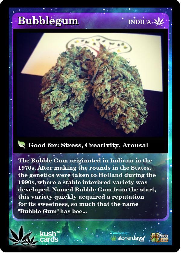 Bubblegum | Repined By 5280mosli.com | Organic Cannabis College | Top Shelf Marijuana | High Quality Shatter
