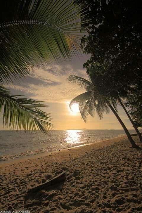 ..... il Sole. ..scende. ...verso l'orizzonte. ... e la sera avanza . ...lentamente. ... noi due ci ritroviamo quì. ... in questa spiaggia solitaria. ... come naufraghi. ... ma felici. ... felici di essere ancora uniti. ... stretti... in un tenero. ... caldo. .... ed eterno abbraccio d'AMORE. ......  d.romans