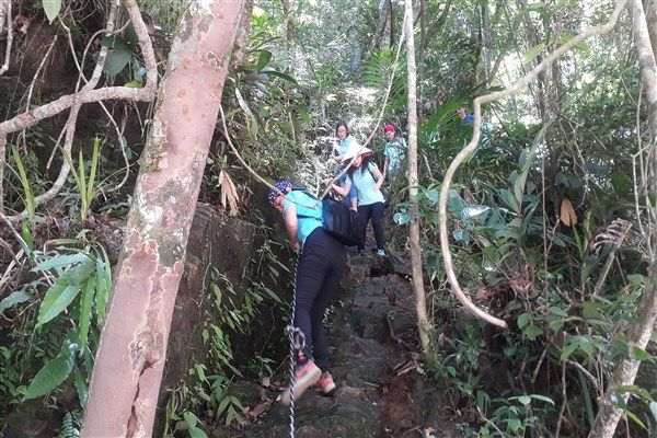 Bach Ma National Park is ideal place to discover beauty of nature
