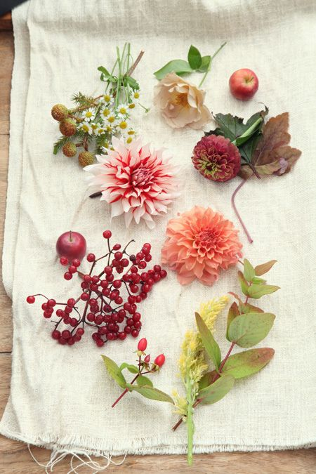 A beautifull flower and fruit collage - take a walk in your garden or in the vicinity of your home and have an eye for the small beauties which nature presents to you. Overlooked by most, you can bring together the Wonder of Mother Nature