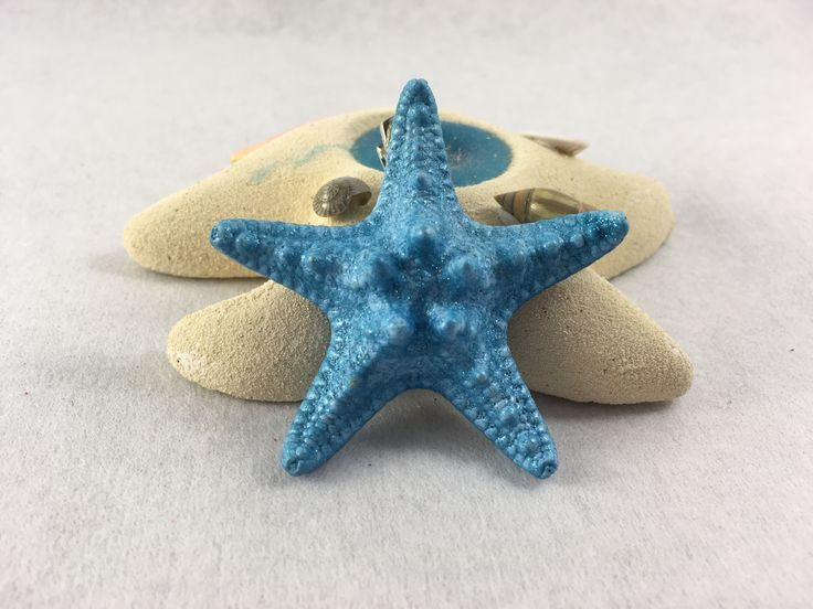 One of a kind. Real starfish hair clip.