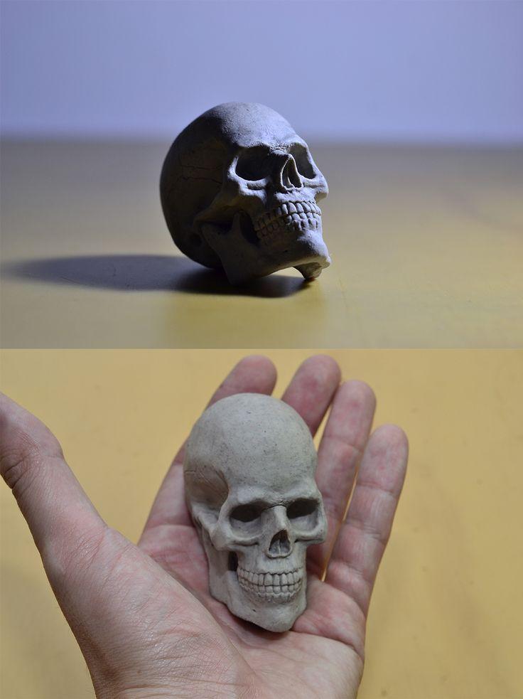 Modelado de cráneo Humano a escala - scale sculpt of human skull
