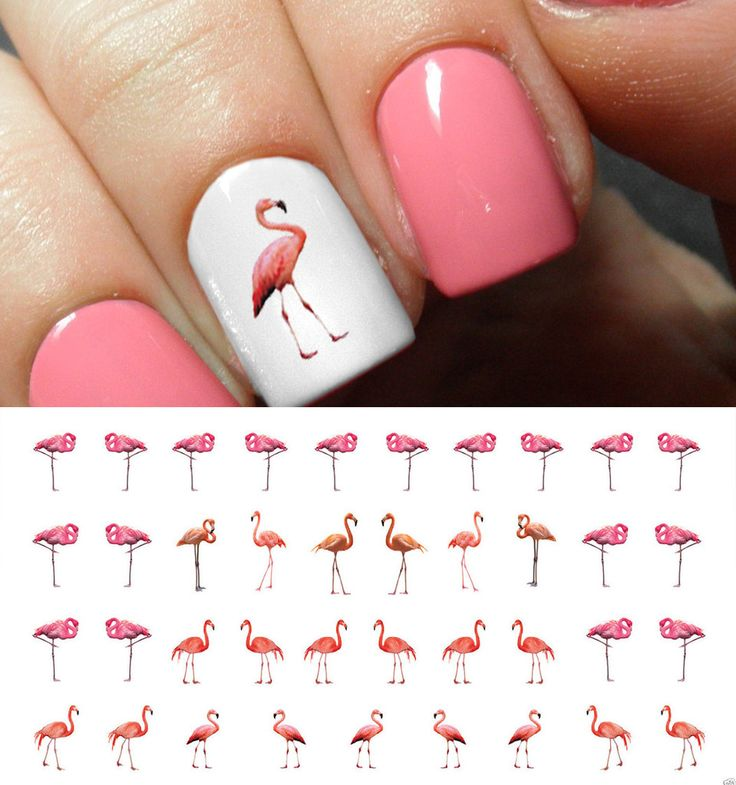 "Flamingo Nail Decals - 40 decals (5 1/2"" x 3"" sheet)"