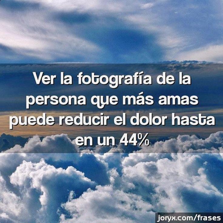 #(@_@)# Pásala bien con h memes, memes en español the walking dead carl, gifs on tumblr, chiste gin tonic y memes in real life pewdiepie. ➢➢ http://www.diverint.com/memes-imagenes-graciosas-espanol-vegano-vuelve-zombie/