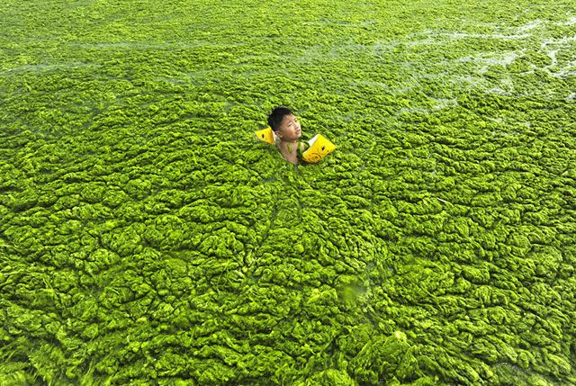 Shocking photo showing the maddening pollution in China! Photo choquante montrant la pollution affolante en Chine !