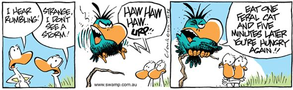 The Bludgerigar has a taste for feral cats. All non cat people will love this cartoon. www.swamp.com.au