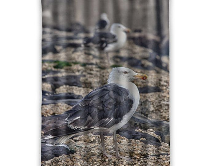 """Seagulls"" ""Beach Design"" ""Beach Decor"" ""Bathroom Beach Decor"" ""Designer Shower Curtains"" ""Designer Shower Curtain"" ""Extra Long Shower Curtain"" ""Extra Long Shower Curtains"" ""Contemporary Shower Curtain"" ""contemporary Shower Curtains"" ""Custom Shower Curtains"" ""Custom Shower Curtain""  ""Modern Shower Curtain"" ""Bathroom Curtain"" ""Bathroom Curtains"" ""Nautical Shower Curtains"" ""Nautical Shower Curtain"" ""Best Shower Curtain"" ""Best Shower Curtains"" ""Kids Shower Curtain"" ""Cute Shower Curtain"""