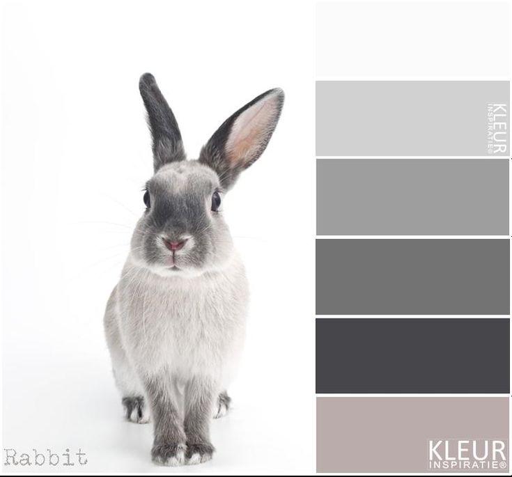 25 beste idee n over kleurenpalet grijs op pinterest for Bruin grijs interieur