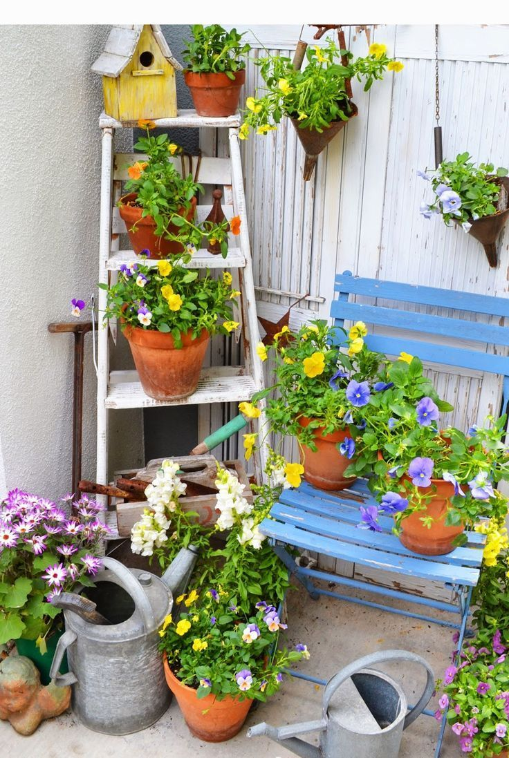 Old ladder, watering cans, birdhouse, and periwinkle blue chair in garden with pansies in clay pots