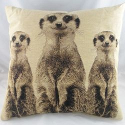 Check out Evans Lichfield Meerkats Cushion from Tesco direct
