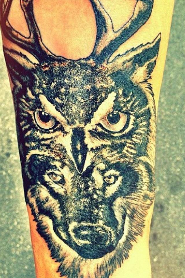 tattoo owl antler wolf ink pinterest tattoo owl