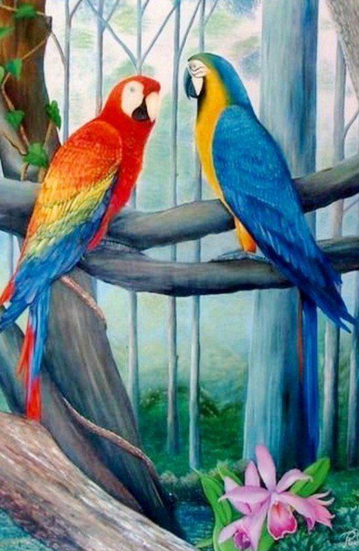 Bonitos Cuadros con Aves Pintura Óleo Arte en Cuadros con Aves Aves Pintadas al Óleo Sobre Lienzo Cuadros con aves Pintados al Óleo Cuadro...