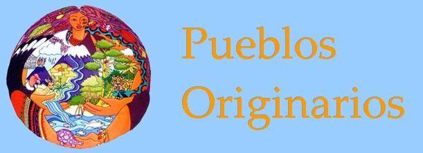 Pueblos Originarios podrán acceder a cargos públicos