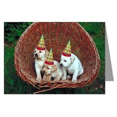 Yellow Lab Puppies Birthday Card > Yellow Labs > Cafe Pets
