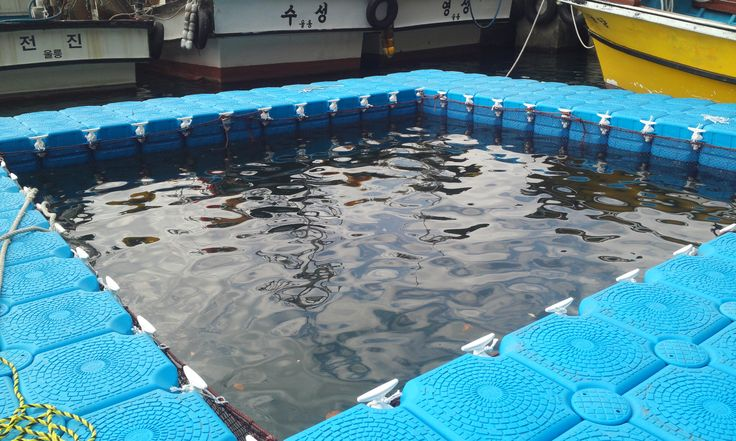 Take a close look how we apply farming net with our connection accessories. This is one of fine job we have done so far! **Floating Fishery**