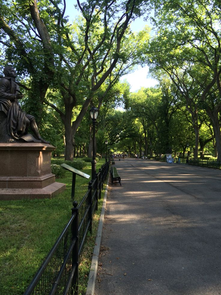 Saturday morning run in Central Park.