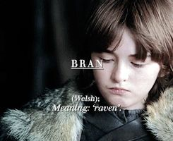 Stark | Game of Thrones I was about to make a post about this because I found out weeks ago that his name meant raven and i was fucking mind blown