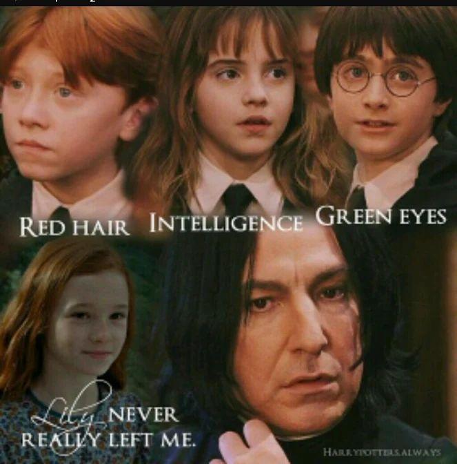 Cheveux roux, intelligence, yeux verts. Lily ne m'a jamais vraiment abandonn…