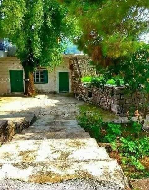 بيت ليف جبل عامل جنوب لبنان Country Roads Old Houses House