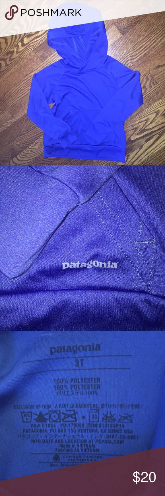 Youth lightweight Patagonia hoodie...Size 3T Boys' or girls' 100% polyester lightweight Patagonia hoodie...Size 3T...no rips, stains or snags...from a smoke free home! Patagonia Shirts & Tops Sweatshirts & Hoodies