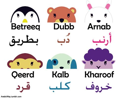 Animals Names in Arabic