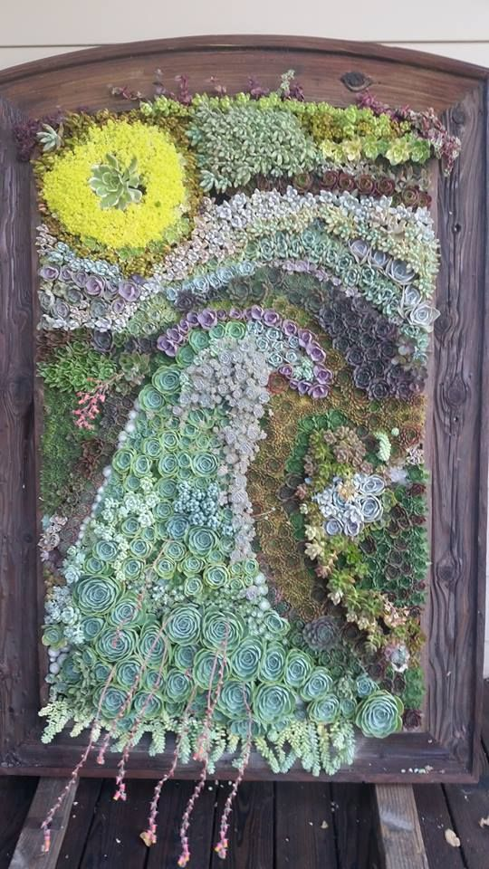 Succulent mosaic picture by Shiva Hurvitz