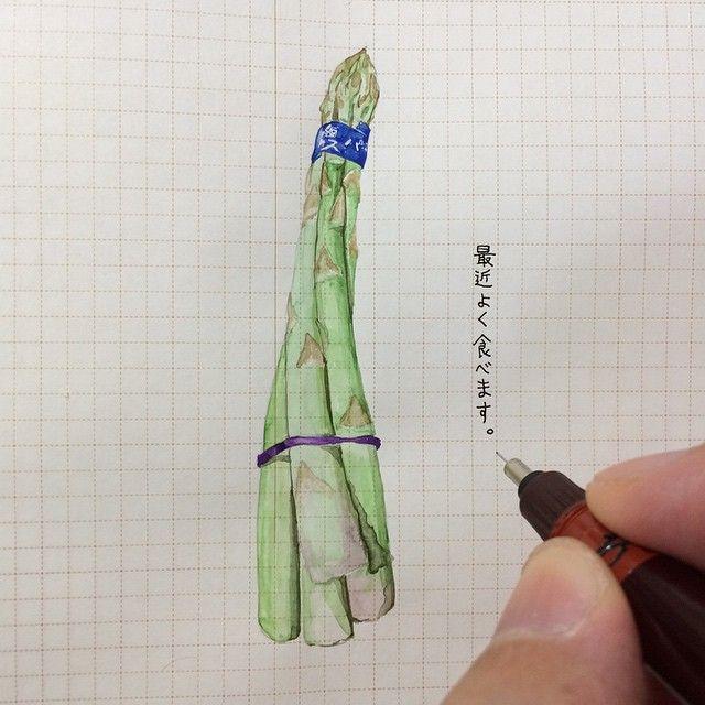 ha_ss 140929 #ほぼ日手帳 #hobonichi #イラスト #illust #アスパラガス #好きっ | Use Instagram online! Websta is the Best Instagram Web Viewer!