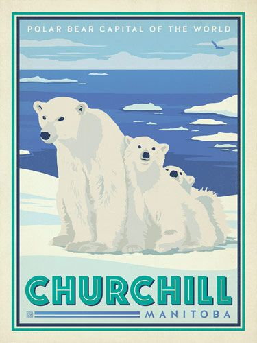 Canada: Churchill Manitoba - A new polar bear print inspired by vintage travel prints from the Golden Age of Poster Design.