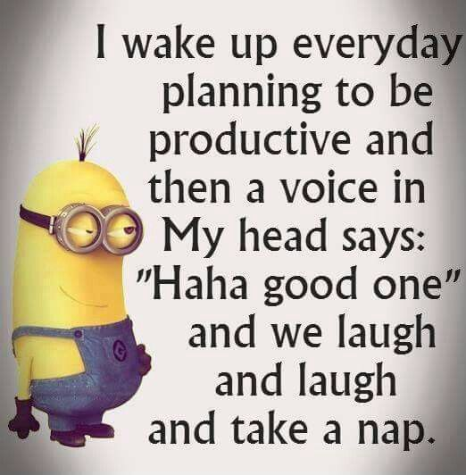 We laugh and laugh and take a nap!