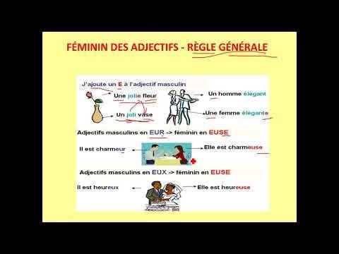 Adjectif Qualificatif 1 Grammaire