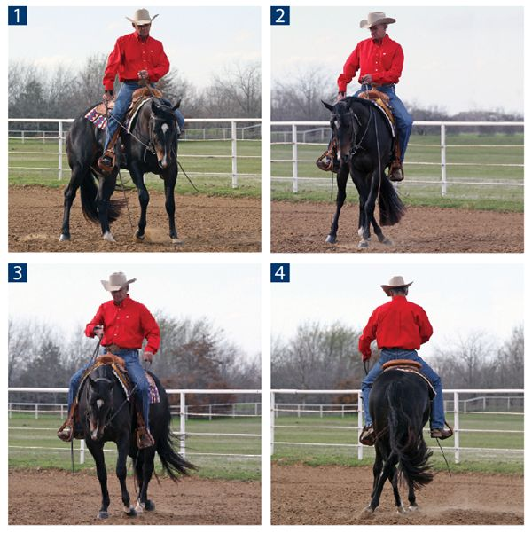 Master the sidepass for optimal control over your horse's front and hind ends.