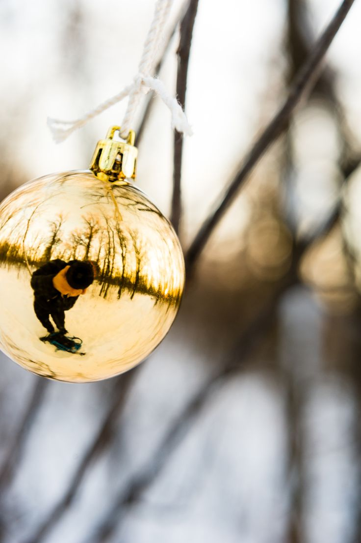 Off Kilter - Despite the holidays being over, I found this ornament in the forest and shooting it at an angle just seemed to make the most sense.