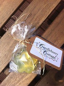 Iced lemon and mango soap - £3.00 http://www.ebay.com/itm/261313001148?ssPageName=STRK:MESELX:IT&_trksid=p3984.m1555.l2649