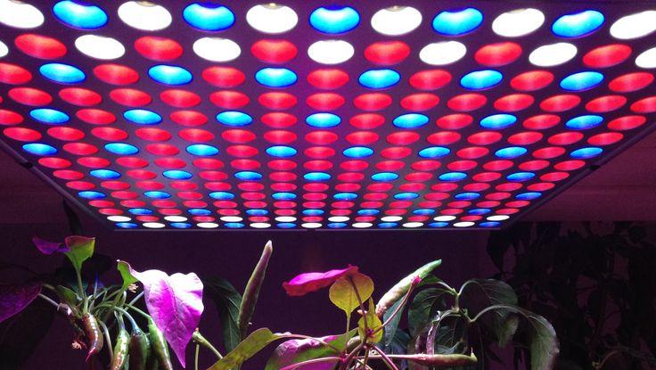 1000 id es sur le th me panneau led sur pinterest for Lampe pour plante d interieur