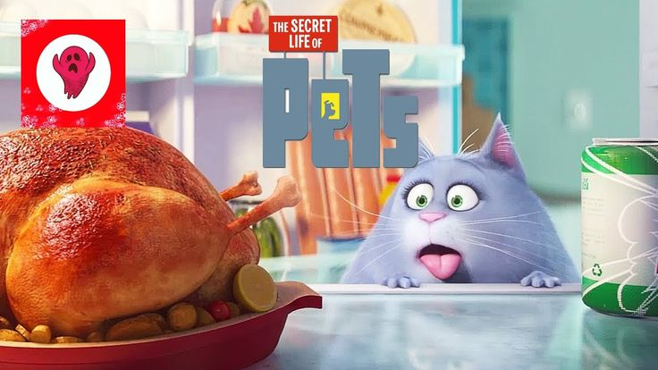 Secret Life Of Pets toys review and play/ Happy Meal Chloe and Buddy toys
