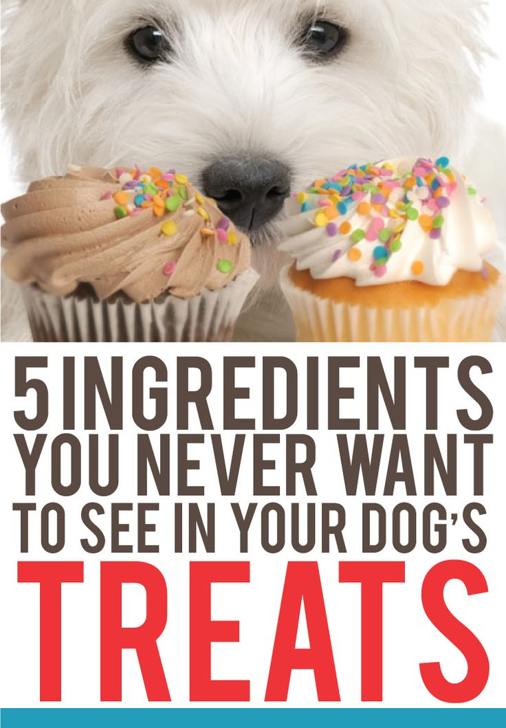 Make sure you check your label for these! http://theilovedogssite.com/5-ingredients-you-dont-want-to-see-in-your-dogs-treats/