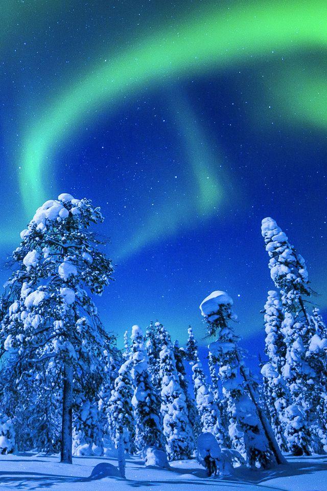 Winter Northern Lights Wallpaper. winter landscape