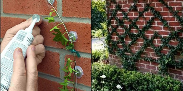 Diy Garden Ideas: 430991 Best Your Best DIY Projects Images On Pinterest